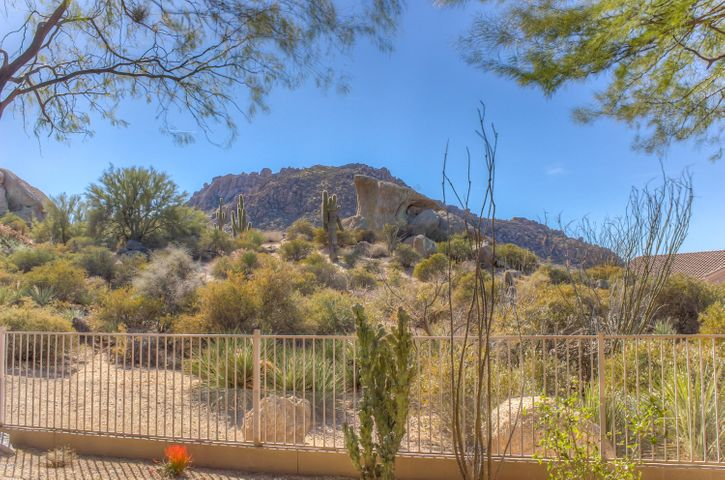 26538 N 115TH Street, Scottsdale, AZ 85255