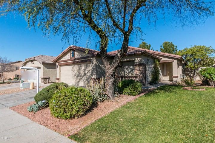 8406 W HAMSTER Lane, Tolleson, AZ 85353