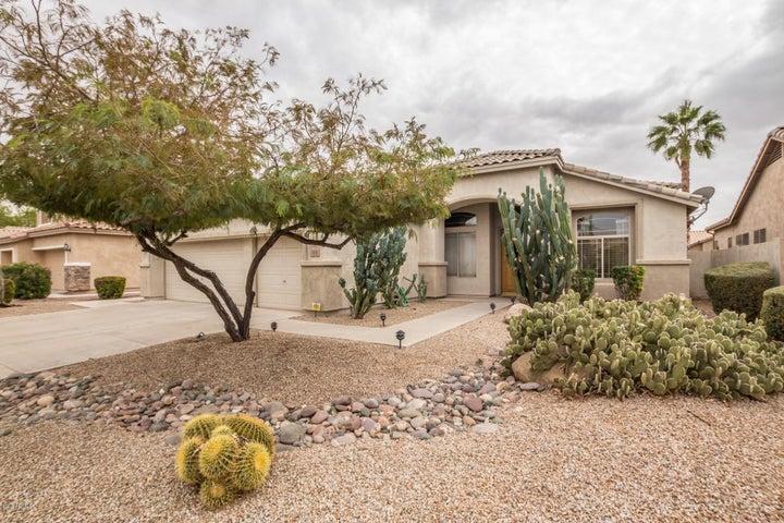 703 W RAVEN Drive, Chandler, AZ 85286