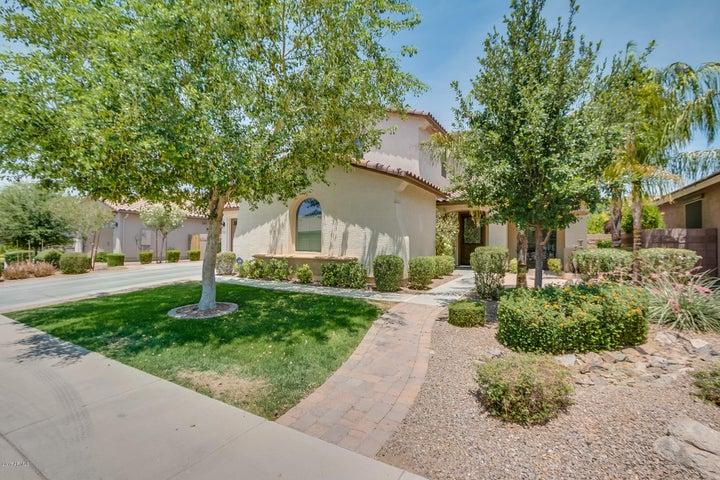 2444 E Sourwood Drive, Gilbert, AZ 85298
