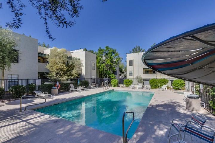 8020 E THOMAS Road, 221, Scottsdale, AZ 85251