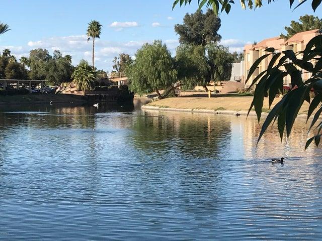 10828 N BILTMORE Drive, 261, Phoenix, AZ 85029