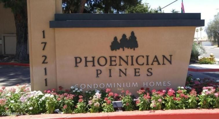 Phoenician Pines