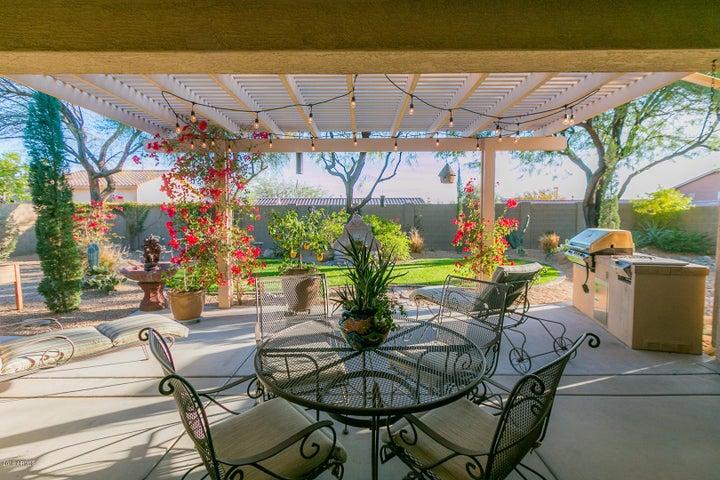 Backyard Tranquility!