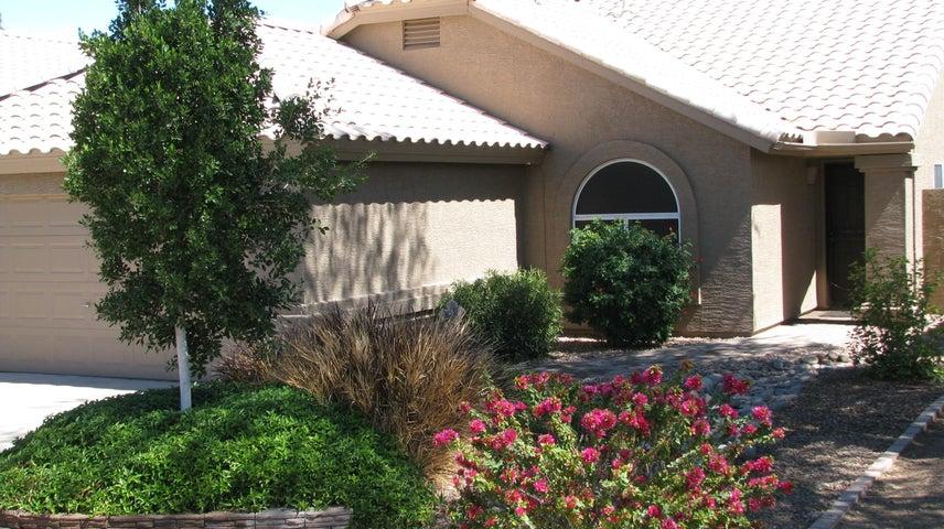 843 N Rush Street, Chandler, AZ 85226