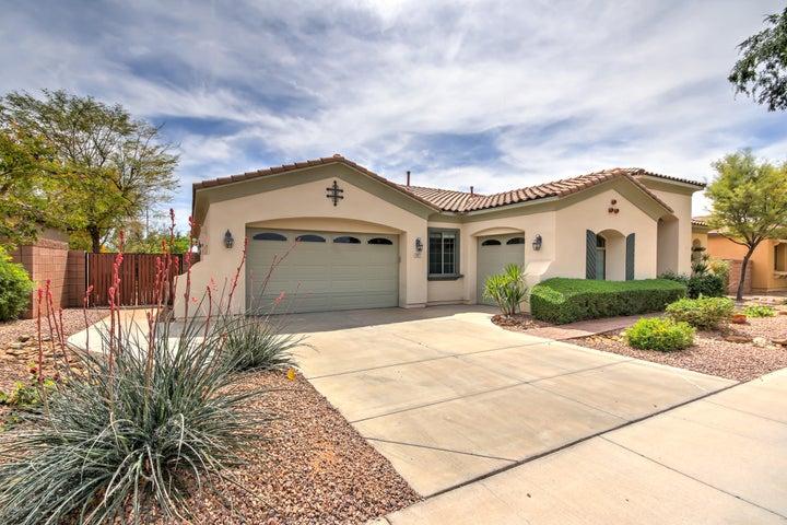 863 W Bluebird Drive, Chandler, AZ 85286
