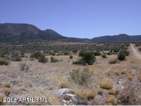 13820 E RINGTAIL Drive, 51, Prescott Valley, AZ 86315