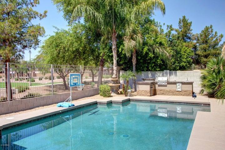 793 W CAROB Way, Chandler, AZ 85248