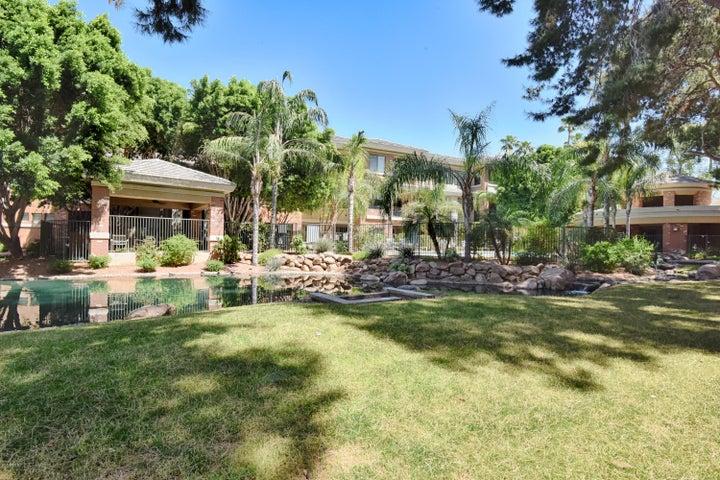 2989 N 44TH Street, 1016, Phoenix, AZ 85018