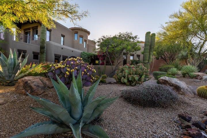 29308 N 108TH Place, Scottsdale, AZ 85262