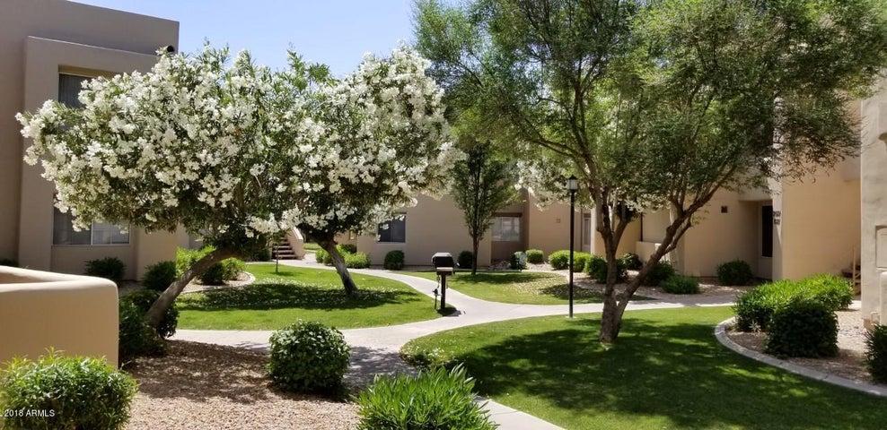 11333 N 92 Street, 2034, Scottsdale, AZ 85260