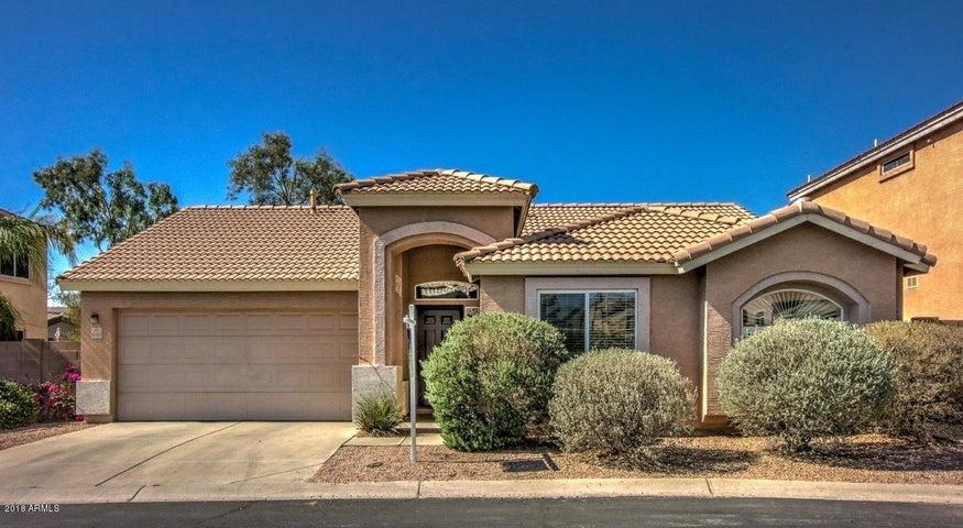 6728 E RIVERDALE Street, Mesa, AZ 85215