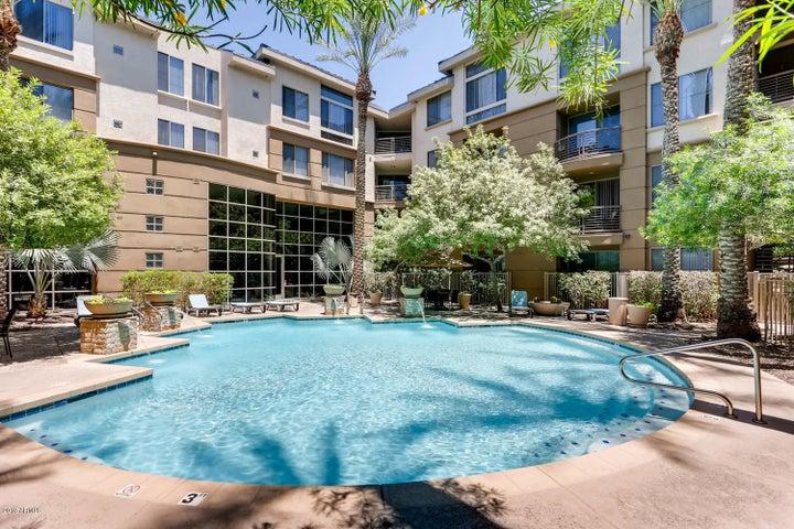 1701 E COLTER Street, 205, Phoenix, AZ 85016