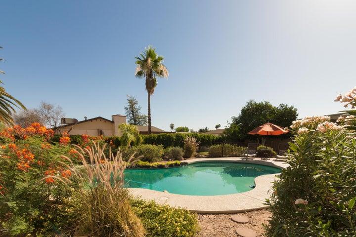 2560 E FAIRFIELD Street, Mesa, AZ 85213