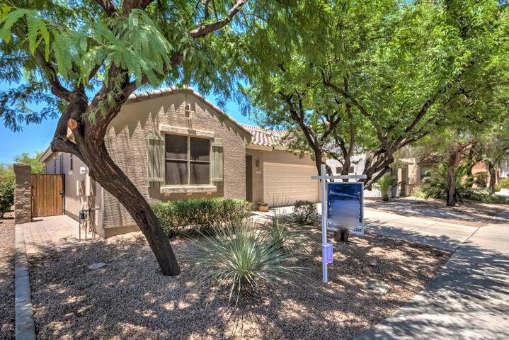 3712 E SEBASTIAN Lane, Gilbert, AZ 85297