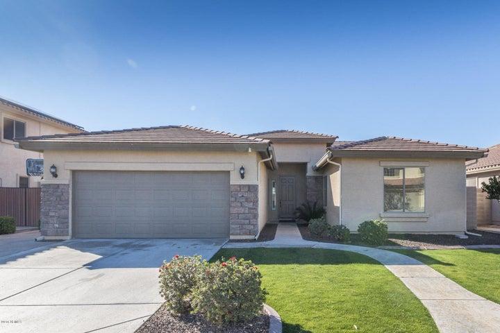 11313 E STARKEY Avenue, Mesa, AZ 85212