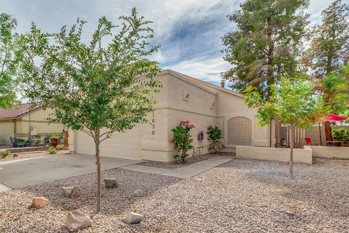 1630 N COMANCHE Drive, Chandler, AZ 85224