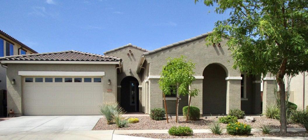 3526 E BART Street, Gilbert, AZ 85295