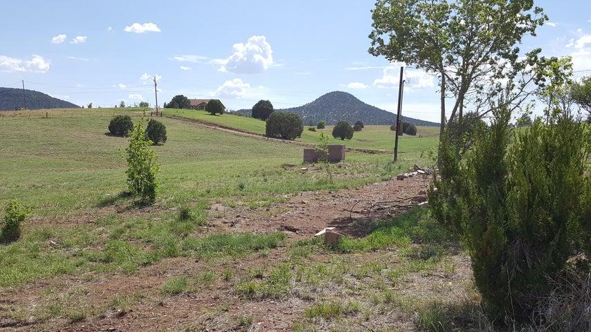 135 S Cohea Lane, -, Young, AZ 85554