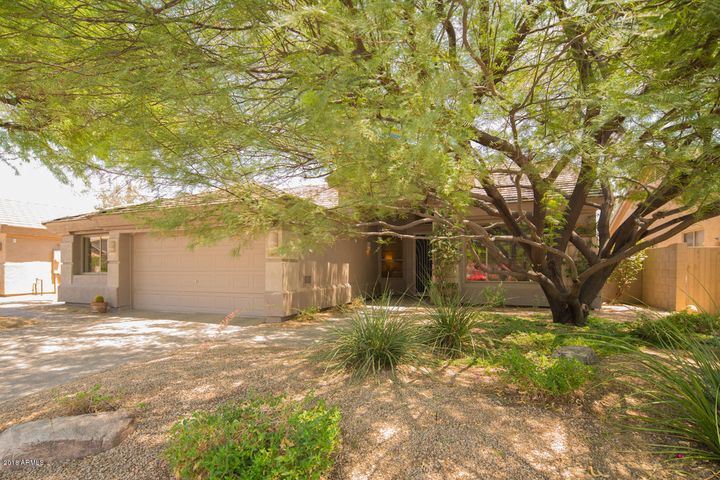 15611 N 65th Street, Scottsdale, AZ 85254