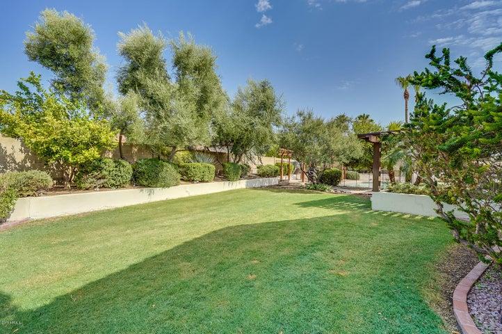 16410 S 43RD Street, Phoenix, AZ 85048