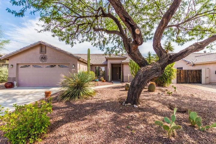 8928 E AMBER SUN Way, Gold Canyon, AZ 85118