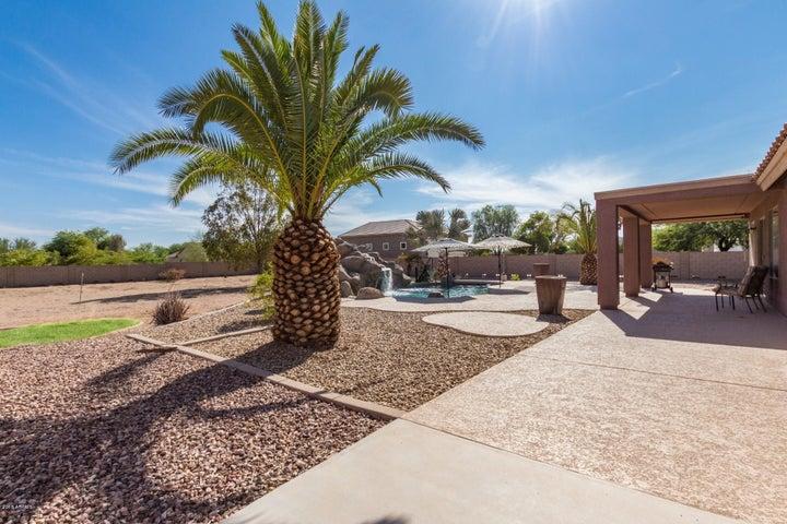 18923 W INDIANOLA Avenue, Litchfield Park, AZ 85340