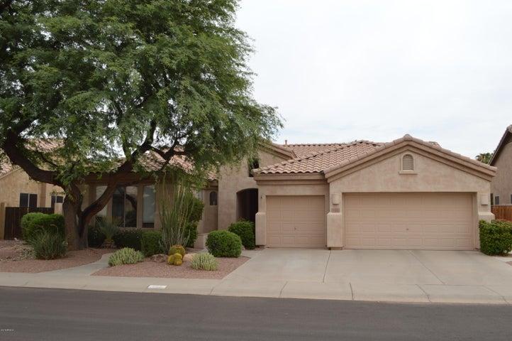 722 W RAVEN Drive, Chandler, AZ 85286