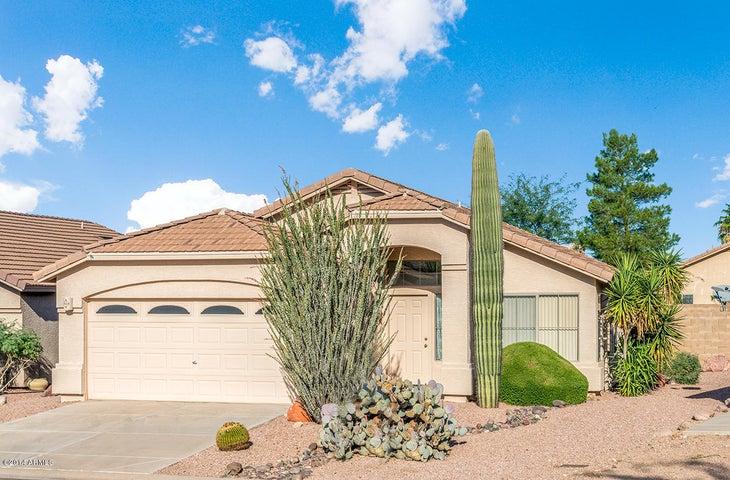 8886 E CIVANO Drive, Gold Canyon, AZ 85118