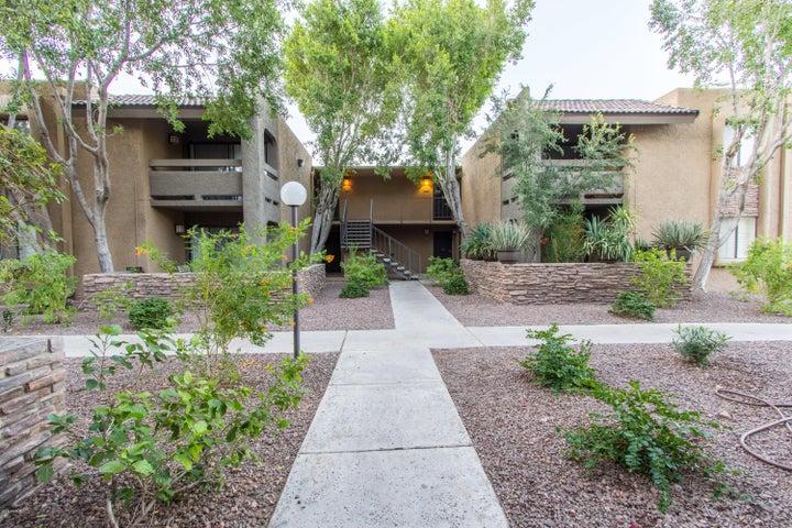 3825 E CAMELBACK Road, 202, Phoenix, AZ 85018