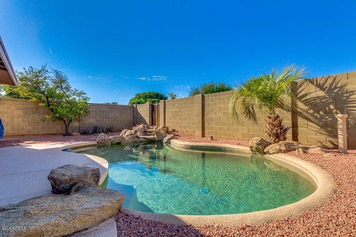 2246 W Larkspur Drive, Phoenix, AZ 85029