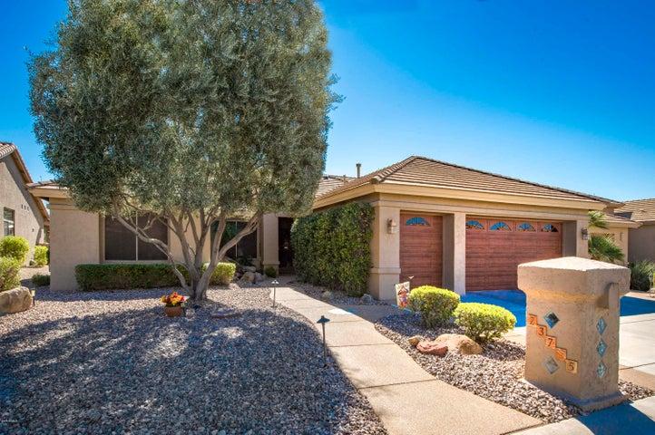 23725 S GLENBURN Drive, Sun Lakes, AZ 85248