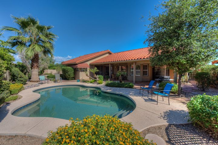 Open backyard with plenty of room for kids, pets, family and fun!