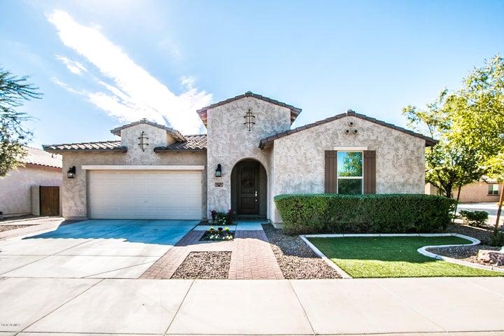 1425 E Ibis Street, Gilbert, AZ 85297