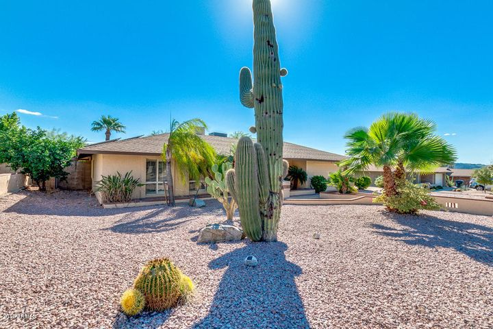 Front Yard View With Gorgeous Desert Landscaping