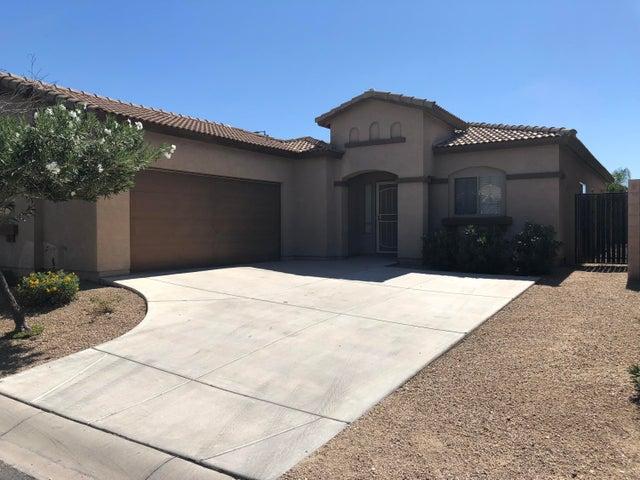 553 E SAN CARLOS Way, Chandler, AZ 85249