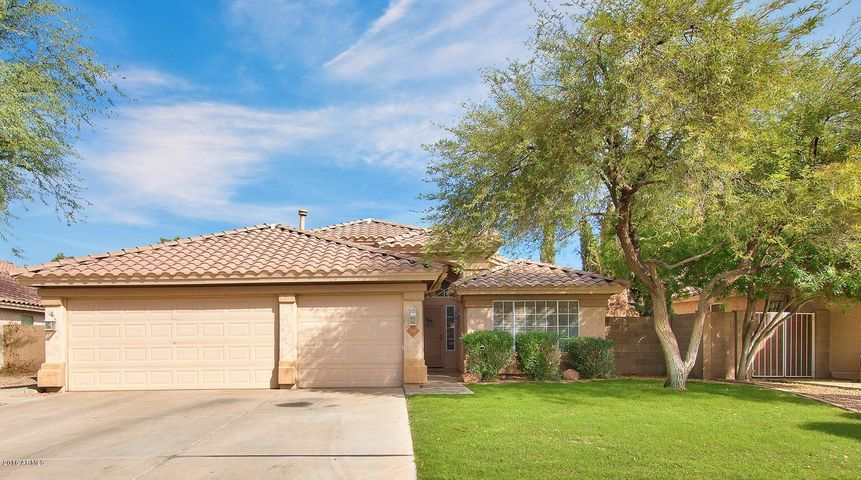 702 W SCOTT Avenue, Gilbert, AZ 85233