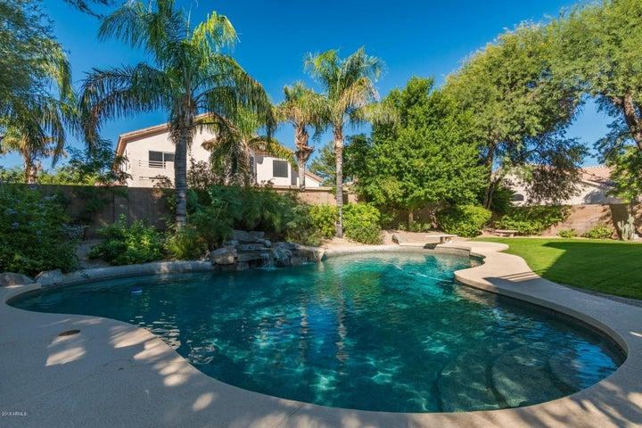 5342 E HARTFORD Avenue, Scottsdale, AZ 85254