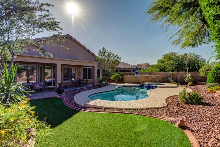 Delightful Backyard