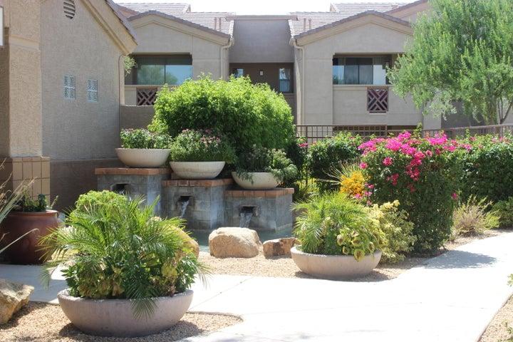 29606 N TATUM Boulevard, 142, Cave Creek, AZ 85331