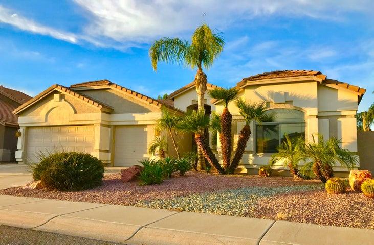 6958 W MORNING DOVE Drive, Glendale, AZ 85308