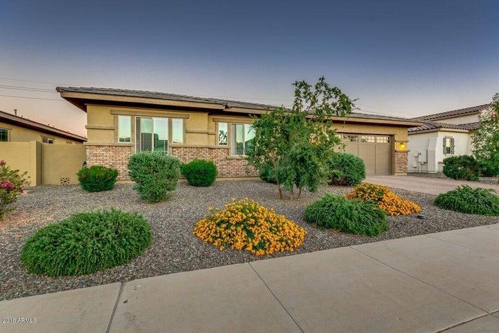 5283 S Joshua Tree Lane, Gilbert, AZ 85298
