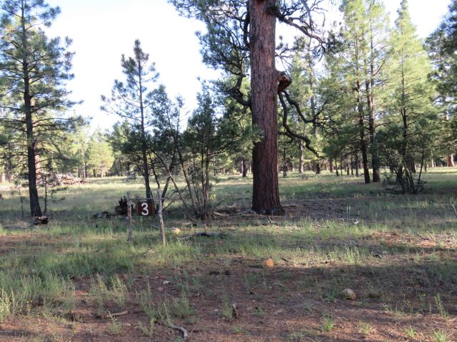 3 Wood Springs Road, -, Munds Park, AZ 86017