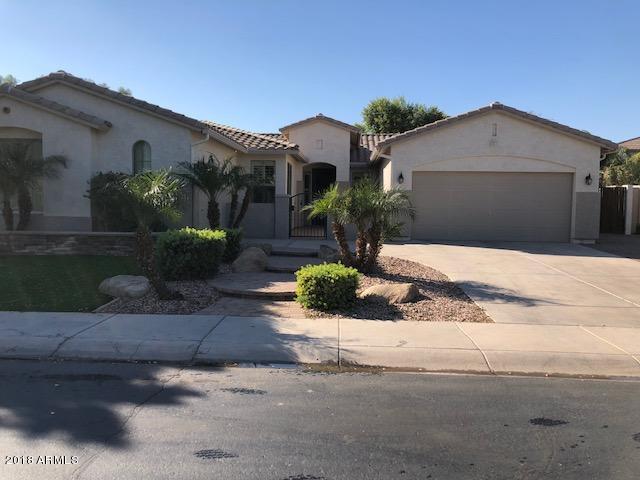 4556 S BUCKSKIN Way, Chandler, AZ 85249