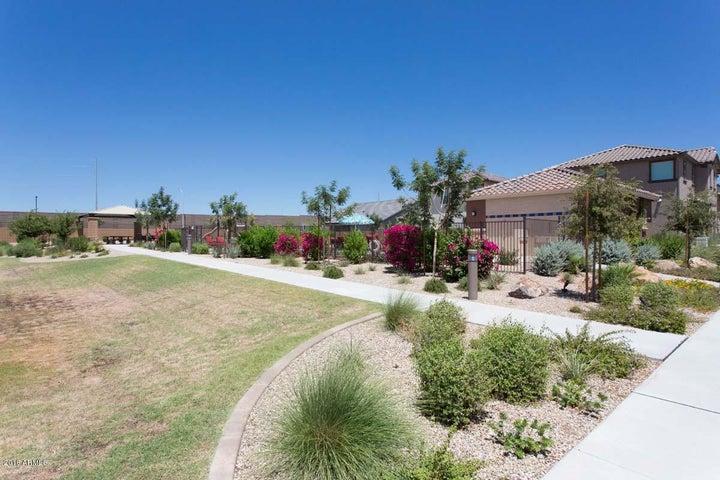 16648 W JENAN Drive, Surprise, AZ 85388