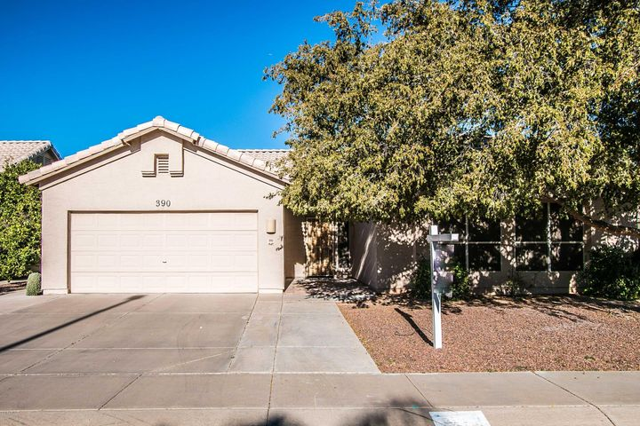 390 W PRIMOROSO Drive, Gilbert, AZ 85233