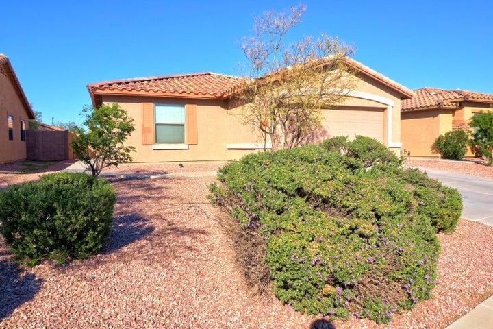 25078 W DOVE Trail, Buckeye, AZ 85326