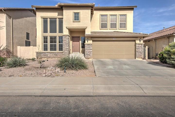 43960 W BUCKHORN Trail, Maricopa, AZ 85138