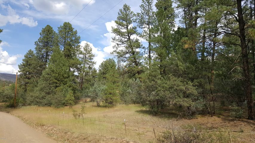 35 W Forest Svc Rd 200, 35, Young, AZ 85554
