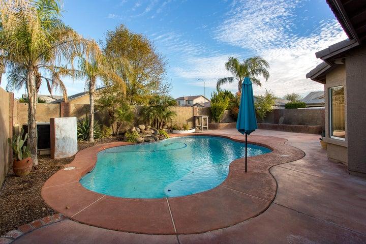 11556 W HARRISON Street, Avondale, AZ 85323